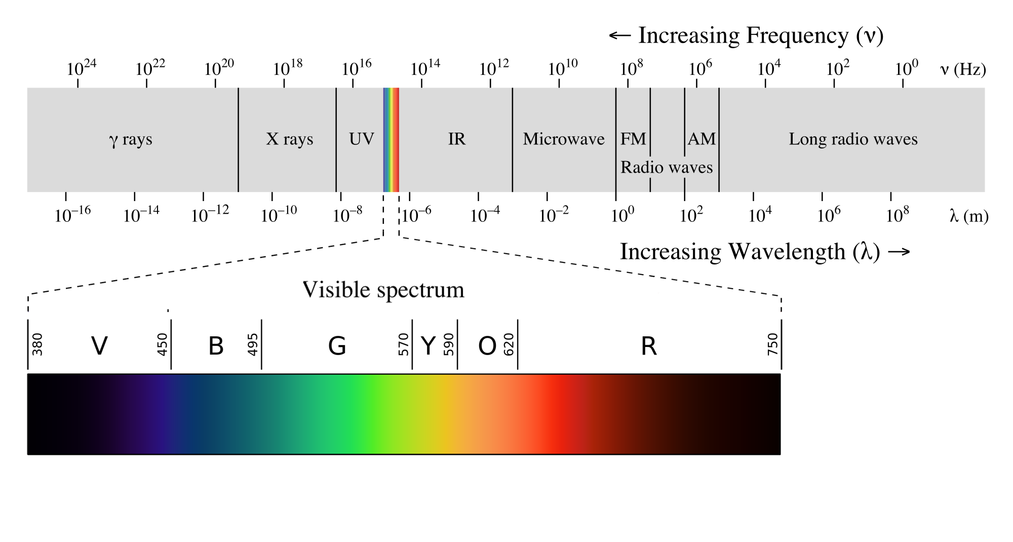 The electromagnetic light spectrum is important cannabis cultivation lighting.