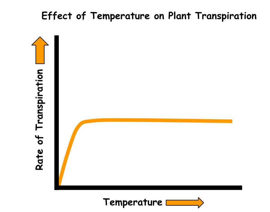 Effect of temperature on plant transpiration