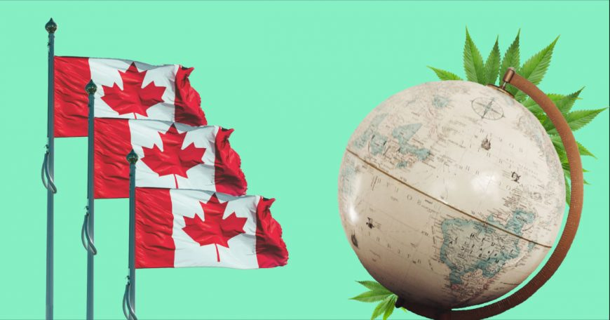 GrowerIQ Can Help You Access Cannabis Funding from the Trade Commissioner Service