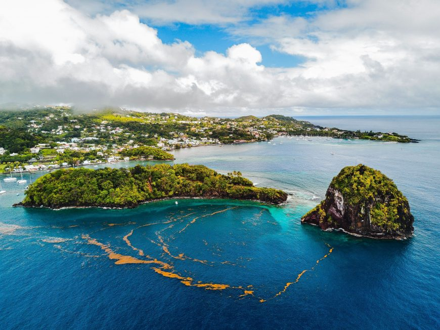 How to Get a Cannabis Cultivation License in Saint Vincent and the Grenadines