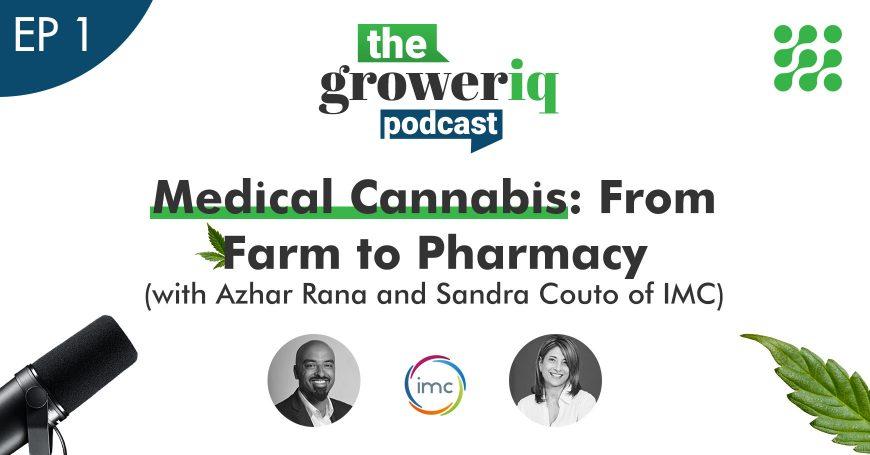 Medical Cannabis: From Farm to Pharmacy (with Azhar Rana and Sandra Couto of IMC)