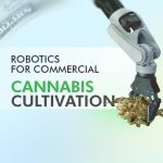 Robotics for Commercial Cannabis Cultivation