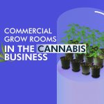 Commercial Grow Rooms in the Cannabis Business