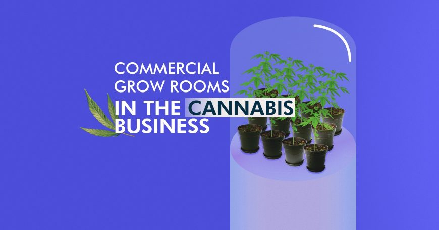 Commercial Grow Rooms Tips