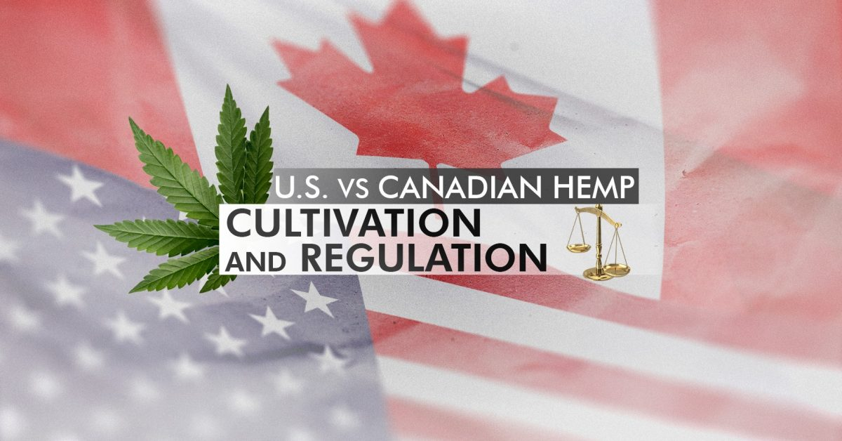 Comparing both countries' regulations on hemp