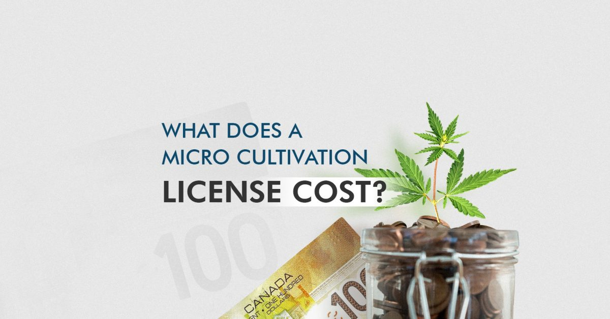 Micro Cultivation Licensing Tips