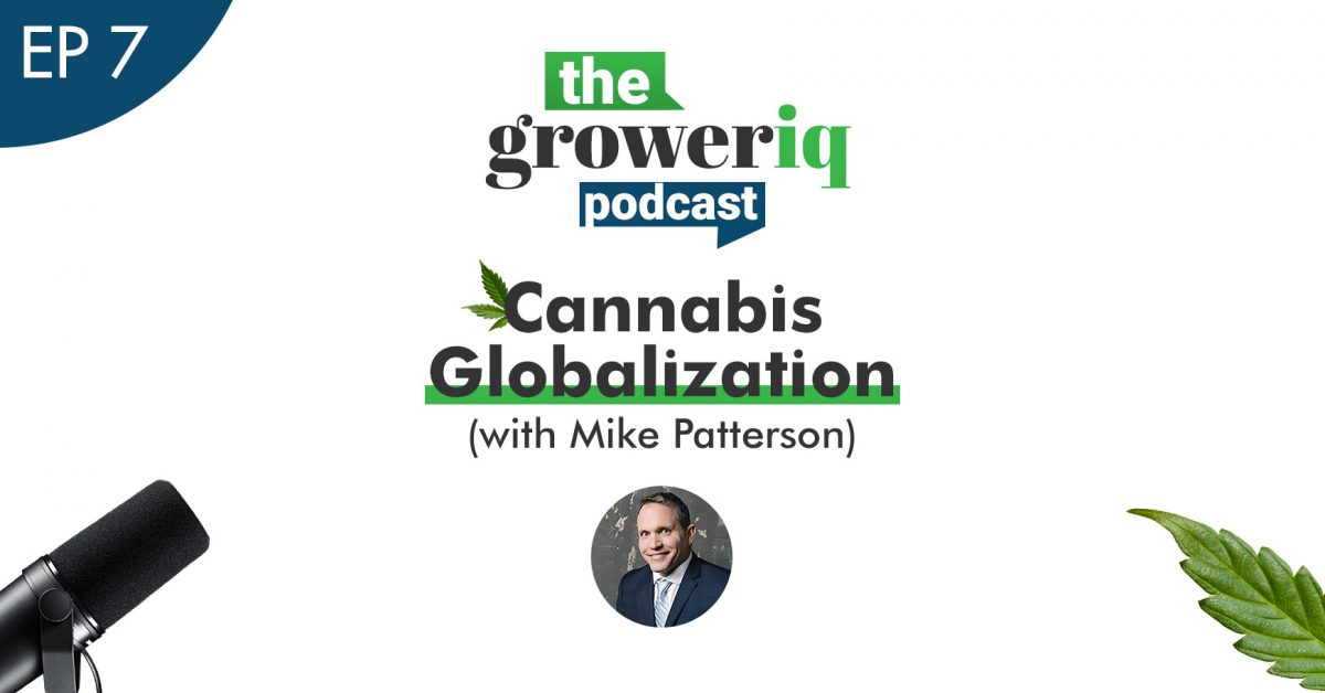 Cannabis Globalization