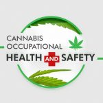 Cannabis and Occupational Health and Safety