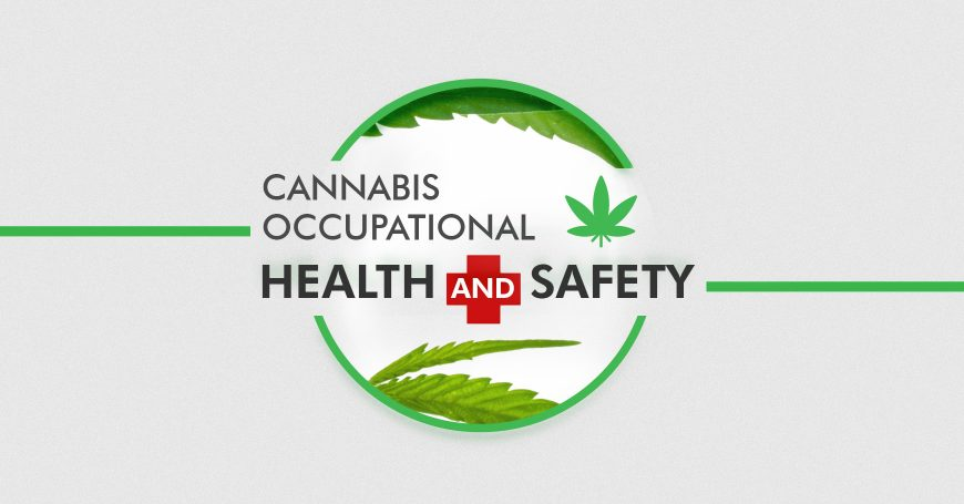 Cannabis Occupational Health and Safety