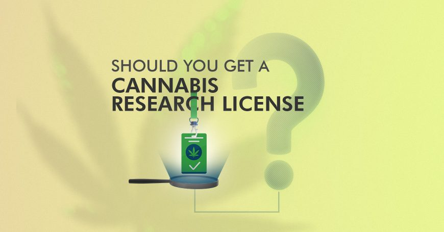 Should you get a Cannabis Research License