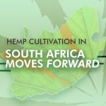 Hemp Cultivation in South Africa Moves Forward